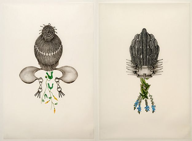 Joscelyn Gardner, Aristolochia bilobala (Nimine) and Veronica frutescens (Mazerine) from the series Creole Portraits, 2010