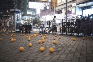 Oranges On Ground_Doreen Chan