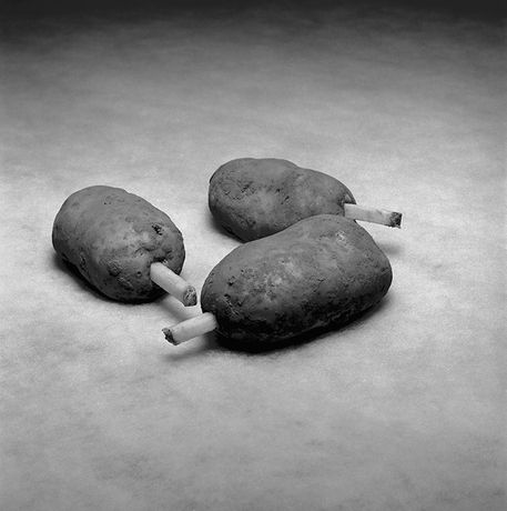 Three Test Potatoes, McCain, Bethune, France, 2017, © Brian Griffin