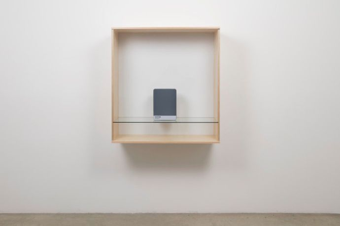 Haim Steinbach, 'Untitled (Pantone Cool Gray 10)', 2016, Baltic birch plywood, plastic laminate and glass box, with metal Pantone storage box, 41 3/8 × 39 3/8 × 17 1/2 in. (105.09 × 100.01 × 44.45 cm).