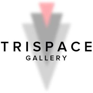 Calling Artists for Art Splash Event @ Trispace Gallery