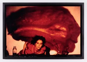 Carolee Schneemann. Fresh Blood a Dream Morphology 1983/2004
