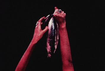 Carolee Schneemann - Meat Joy (still), 1964–2010