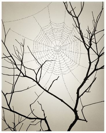 © Chema Madoz, courtesy Galerie Esther Woerdehoff
