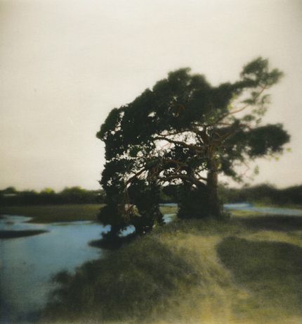 hand painted lith print by Marianne Priest