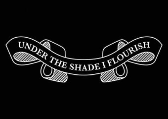 Chris Alton - Under the Shade I Flourish