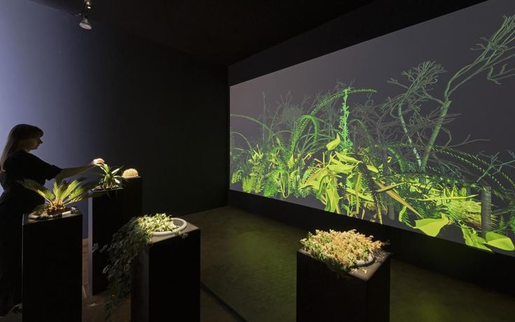Christa Sommerer, Laurent Mignonneau, »The Interactive Plant Growing « in the Exhibition Writing the History of the Future