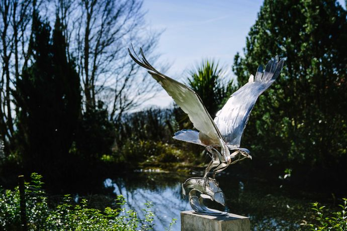 Clare Bigger 'Osprey' Stainless steel 42x23ins