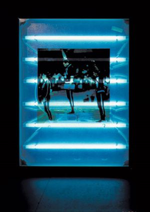 Mexico, 1991, Light box, fluorescent tube 180x 107 cm  Collection The Estate of Donald Rodney