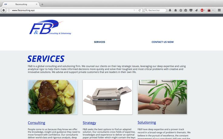 F&B Consulting and Solutioning Firm's website, screencapture main page