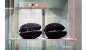 Cosima von Bonin, SCALLOPS (DARK VERSION), ROCKING, 2014. Courtesy the artist and Petzel, New York