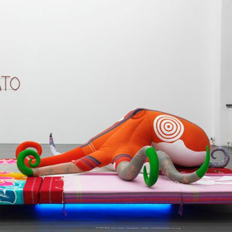 COSIMA VON BONIN'S BONE IDLE FOR ARNOLFINI'S SLOTH SECTION, LOOP #2 OF THE LAZY SUSAN SERIES, A ROTATING EXHIBITION 2010 - 2011: Image 0