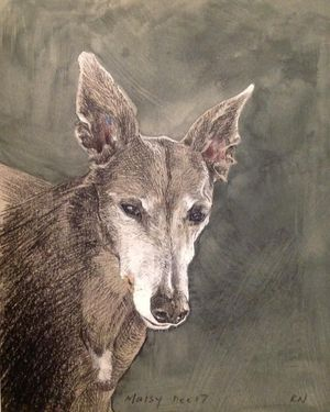 Create a Pet Portrait with Pastels