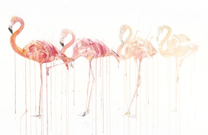Dave White, Flamingo Movement