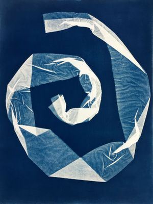 Cyanotype and Photogram Workshop Imprinting the market