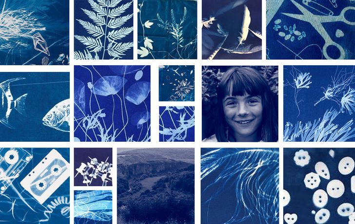 Cyanotype grid by Caitlin Webb-Ellis.