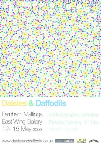 Daises and daffodils: Image 0