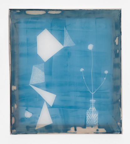 Natasza Niedziolka STILL LIFE. PHOTO EXPOSURE, 2012 light-sensitive emulsion on polyester 45 x 40 cm.