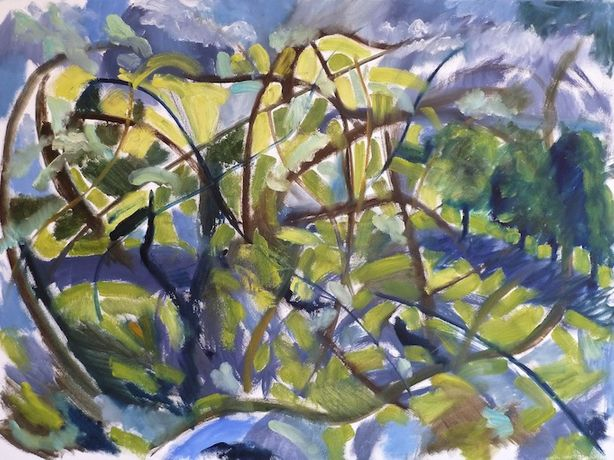 DAVID BOTTOMLEY Still life and landscape paintings: Image 0