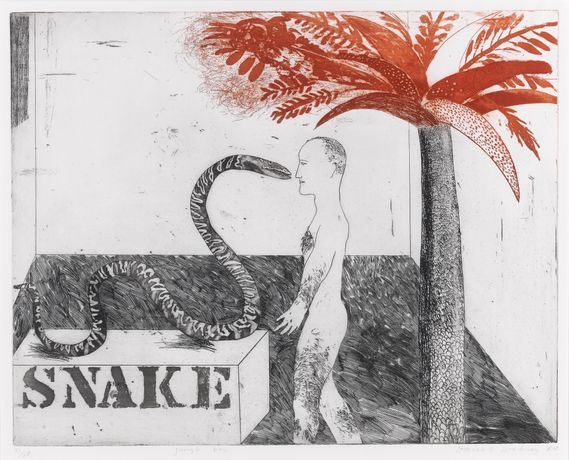 Jungle Boy, 1964, David Hockney