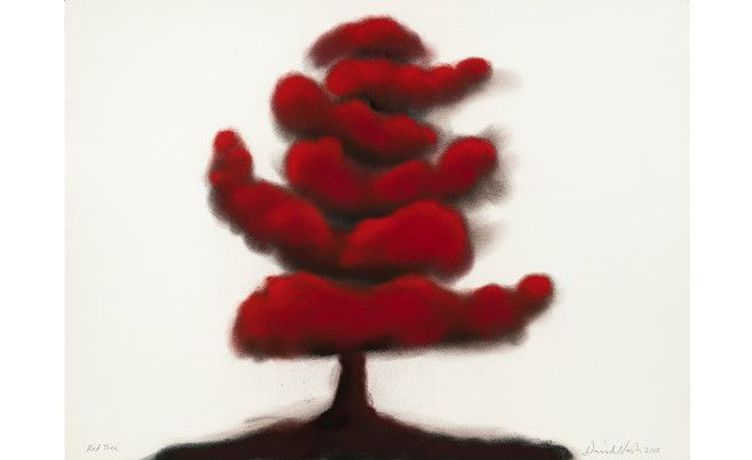 Red Tree, 2018 Pastel sur papier — 57 × 76 cm © David Nash / Courtesy Galerie Lelong & Co.