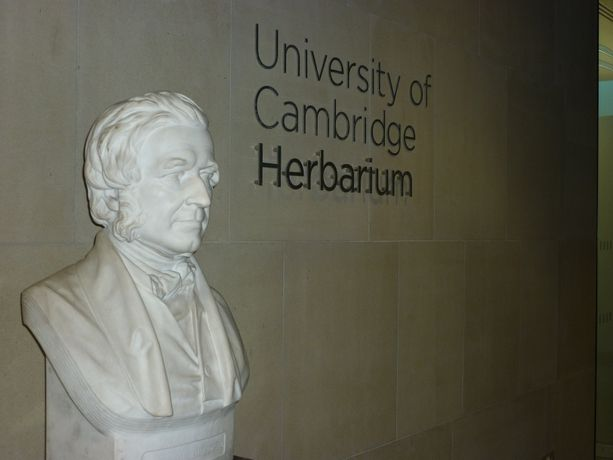 Day Trip: Cambridge University Herbarium: Image 1