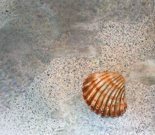Cockle Shell on Sand by Rose Elliott