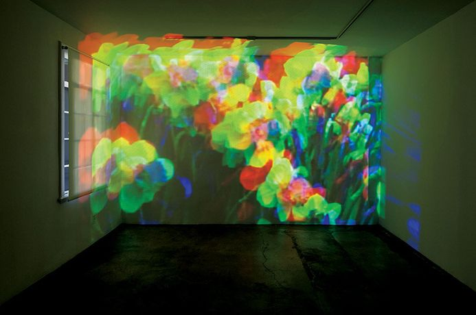Diana Thater, Oo Fifi, Five Days in Claude Monet's Garden, Part 1, 1992. Video projector and player; dimensions variable. Installation view, 1301PE, Los Angeles, 2012. © Diana Thater Photo: © Fredrik Nilsen, courtesy 1301PE, Los Angeles