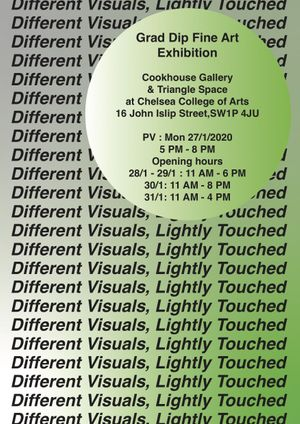 Different Visuals Lightly Touched: Grad. Dip. Fine Art Interim Show
