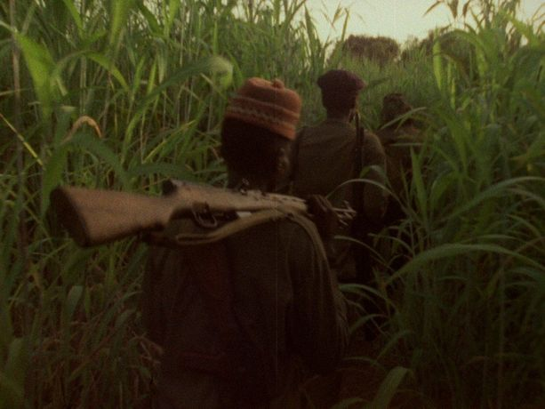 Documentary Film Screening: Concerning Violence: Image 0