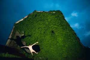 Ryan McGinley   Ivy, 2014  Chromogenic print  44 x 72 in  Edition of 3