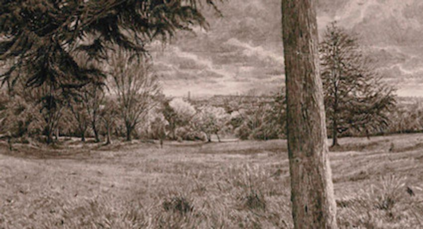 DRAWING A WIDER VIEW - Exhibition of drawings by Christopher Green: Image 0