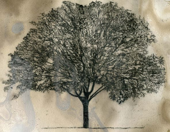 Drawing in Drypoint: Image 0