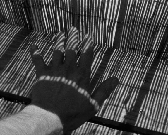 Duncan Marquiss 'Distressed Inventory': Image 0