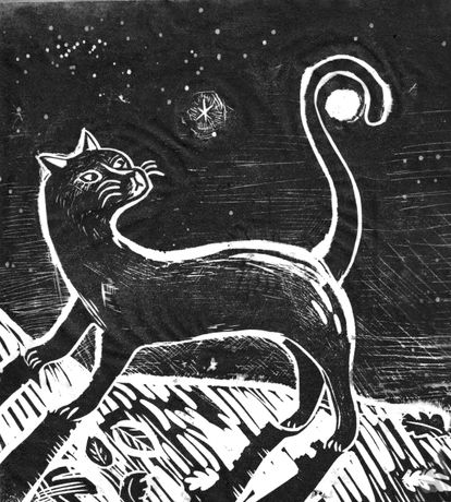 The Cat and The Moon, Ed Boxall