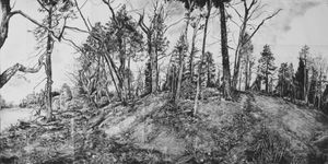 Into the Woods, Auchinleck Scotland, Geraint Evans, 2016, charcoal on paper 92 x 178cms. Courtesy the artist