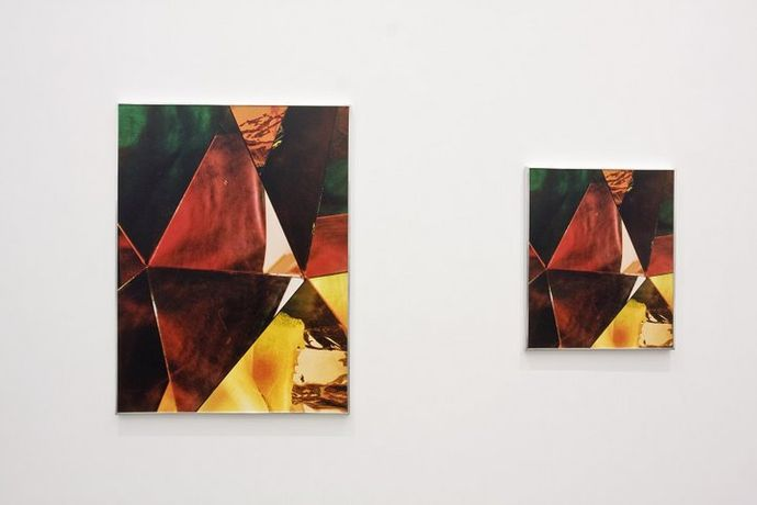 Eileen Quinlan Red Goya (diptych) UV laminated chromogenic prints mounted on Sintra 61 x 51 cm / 24 x 20 inches and 76.2 x 101.6 cm / 30 x 40 inches Edition of 5 Courtesy the artist and Campoli Presti, London / Paris
