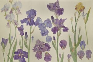 image: Irises (detail), 1987, tapestry © The Fleming-Wyfold Art Foundation