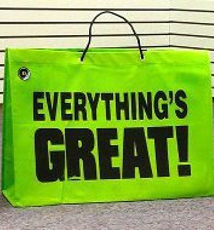 'EVERYTHING'S GREAT!': Image 0