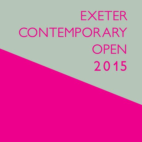 Exeter Contemporary Open 2015: Image 0