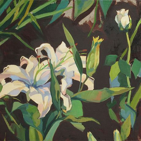 Lachlan Goudie Evening Bloom