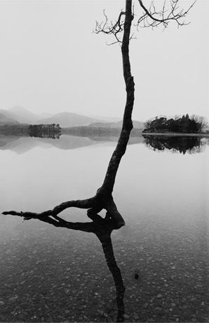 Fay Godwin: Land Revisited: Image 0