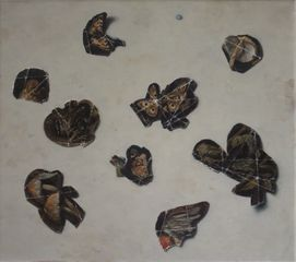 Fragments from a Forest Floor - Aviary
