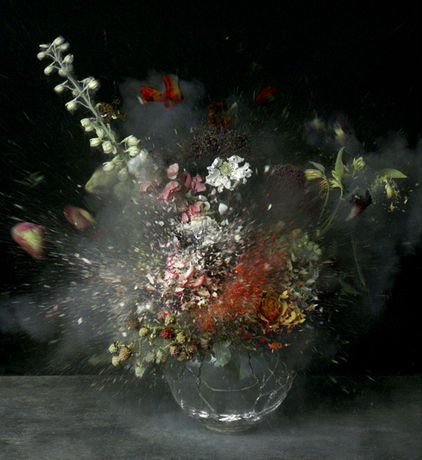 Ori Gersht, Time after Time 08, 2007, LVT Print. Courtesy the artist