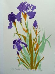 Mauve Irises by Barbara Smith