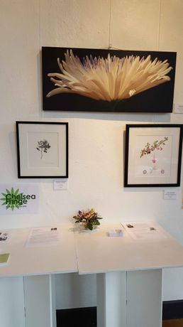 Work by Celia Henderson and Gaynor Dickeson