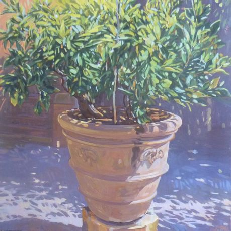 LEMON TREE Oil on canvas 90cmx90cm