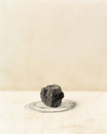 Darek Fortas, Still Life II (Piece of Soil), from 'At Source' series, 2013