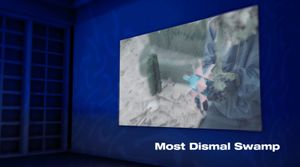 Fold Lab Presents Most Dismal Swamp