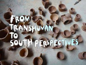 From Transhuman to South Perspectives